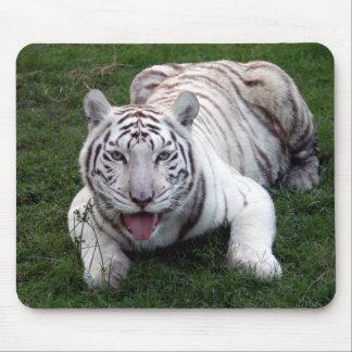 Tigre blanco Mousepad Tapete De Ratones