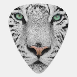 Tigre blanco púa de guitarra