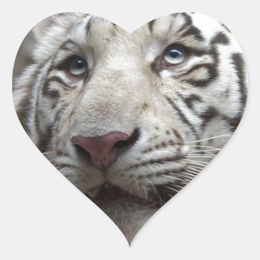 Tigre blanco pegatina en forma de corazón