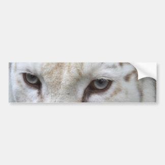 tigre blanco pegatina para auto