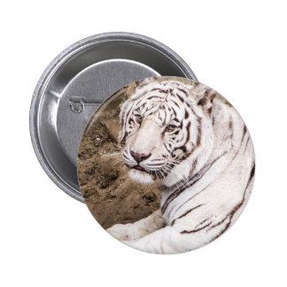 Tigre blanco pins