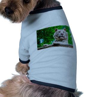 Tigre blanco camiseta con mangas para perro