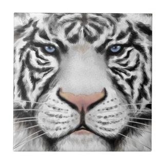 Tigre blanco siberiano azulejo cuadrado pequeño