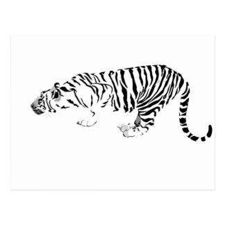 Tigre blanco postales