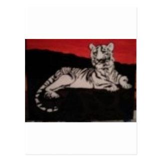 tigre blanco y negro postales