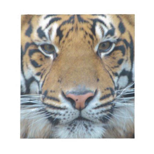 Tigre Bloc De Notas