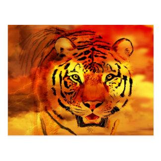Tigre con la salida del sol postales