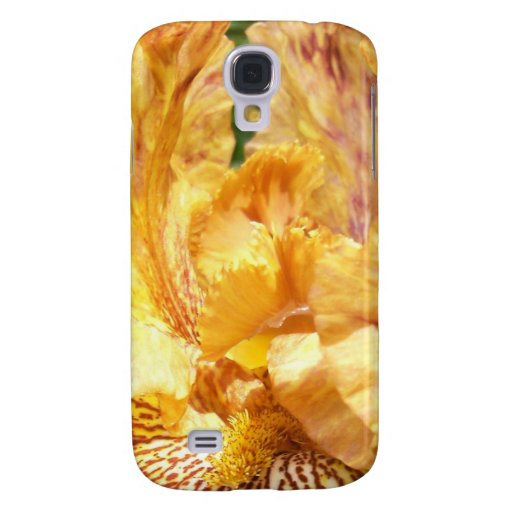 Tigre condimentado iris