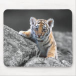 Tigre Cub adorable Mousepad