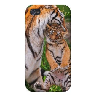 Tigre Cub con la mamá - caja del teléfono iPhone 4 Fundas