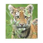 Tigre Cub de Amur Blocs De Notas