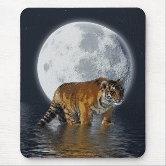 Tigre Cub, gato montés, Luna Llena, animal, Alfombrilla De Ratón