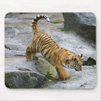 Tigre Cub lindo Mousepad Tapetes De Ratón