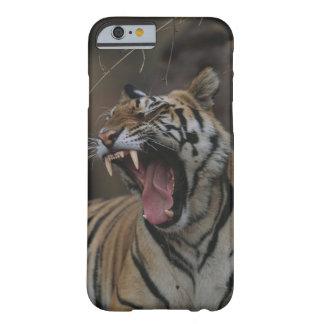 Tigre Cub que bosteza Funda De iPhone 6 Barely There