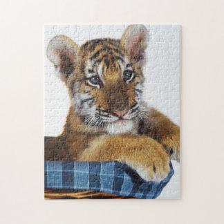 Tigre Cub siberiano en cesta Puzzle