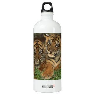 Tigre Cubs de Bengala Botella De Agua