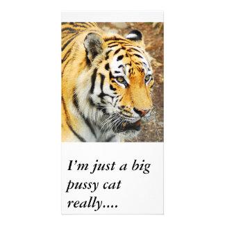Tigre de Amur, soy apenas un gato grande del gatit Tarjetas Fotograficas Personalizadas