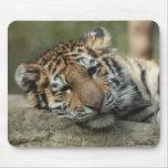 Tigre de bebé el dormir alfombrilla de raton