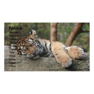 Tigre de bebé el dormir tarjetas de visita
