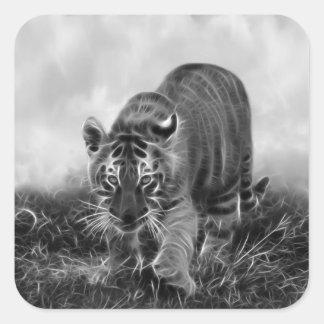 Tigre de bebé que acecha en blanco y negro pegatina cuadrada