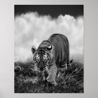 Tigre de bebé que acecha en blanco y negro póster