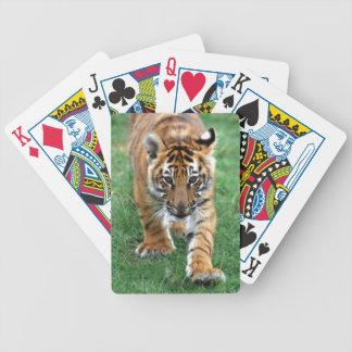 Tigre de bebé que le mira barajas de cartas