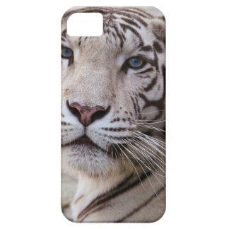 Tigre de Bengala blanco iPhone 5 Cobertura