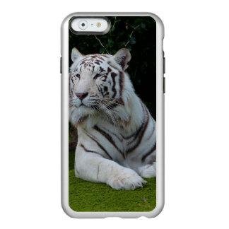 Tigre de Bengala blanco Funda Para iPhone 6 Plus Incipio Feather Shine