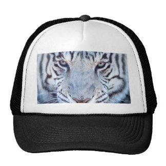 Tigre de Bengala blanco Gorro De Camionero