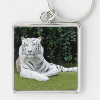 tigre de Bengala blanco Llavero Cuadrado Plateado