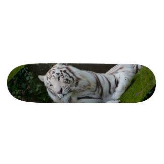 Tigre de Bengala blanco Tabla De Patinar
