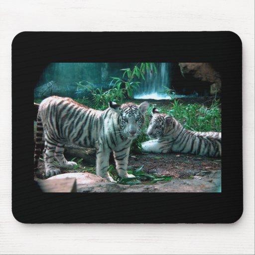 Tigre de Bengala blanco Tapete De Ratones