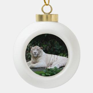 Tigre de Bengala blanco y negro relajado y sonrisa Adornos