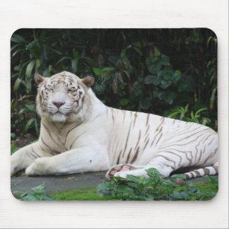 Tigre de Bengala blanco y negro relajado y sonrisa Tapetes De Raton