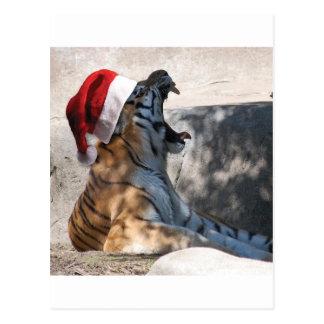 Tigre de Bengala con un gorra de Santa Postal
