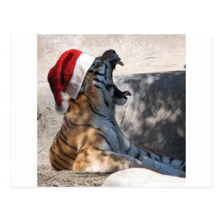 Tigre de Bengala con un gorra de Santa Tarjeta Postal