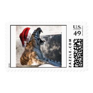 Tigre de Bengala con un gorra de Santa Timbre Postal