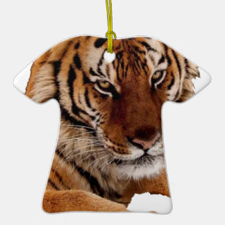 Tigre de Bengala Ornamentos De Reyes Magos