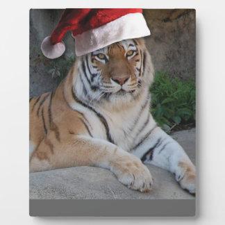 Tigre de Bengala del gorra de Santa Placa De Madera