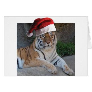 Tigre de Bengala del gorra de Santa Tarjeta De Felicitación