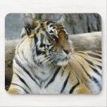 Tigre de Bengala Mousepad Alfombrillas De Ratones