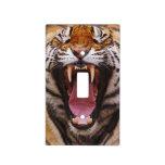 Tigre de Bengala, Panthera el Tigris 2
