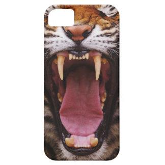 Tigre de Bengala, Panthera el Tigris 2 iPhone 5 Funda