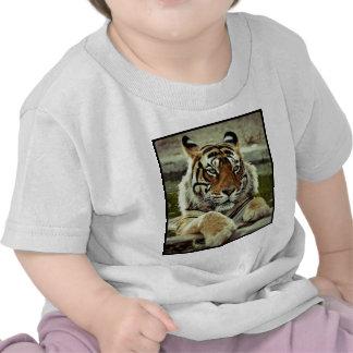 Tigre de Bengala Camiseta