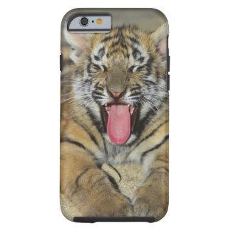 Tigre de Bengala que bosteza Funda De iPhone 6 Tough