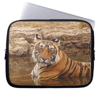 Tigre de Bengala real en la charca de la selva, 2 Funda Ordendadores