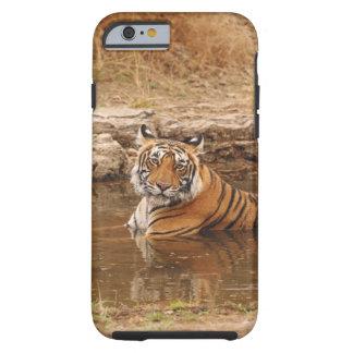 Tigre de Bengala real en la charca de la selva, 2 Funda Para iPhone 6 Tough