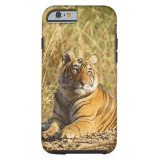 Tigre de Bengala real fuera del prado, Funda De iPhone 6 Tough