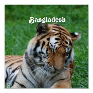"""Tigre de Bengala real Invitación 5.25"""" X 5.25"""""""