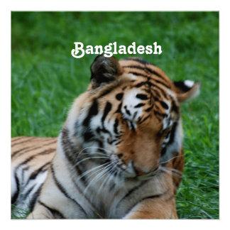 Tigre de Bengala real Invitacion Personalizada